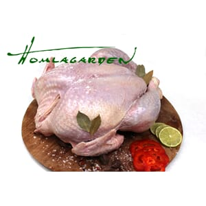 BLACK TURKEY LITEN 3,5 - 5KG